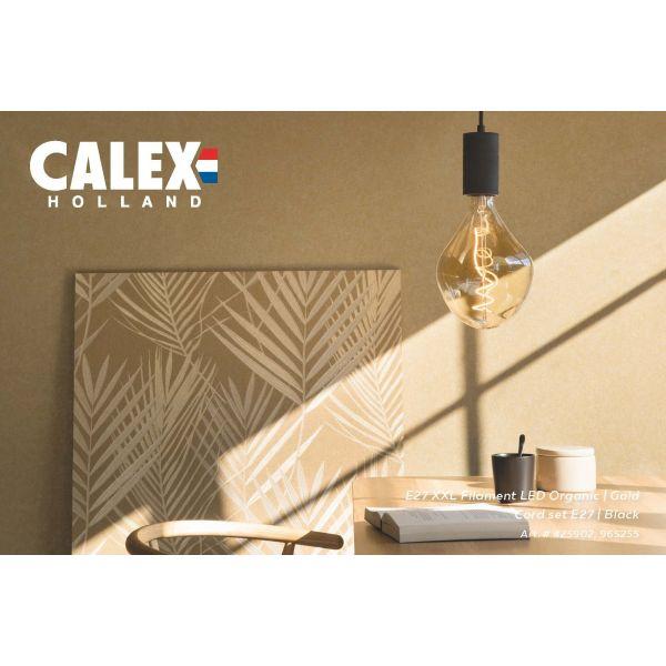 Calex XXL Gold – Organic LED / E27